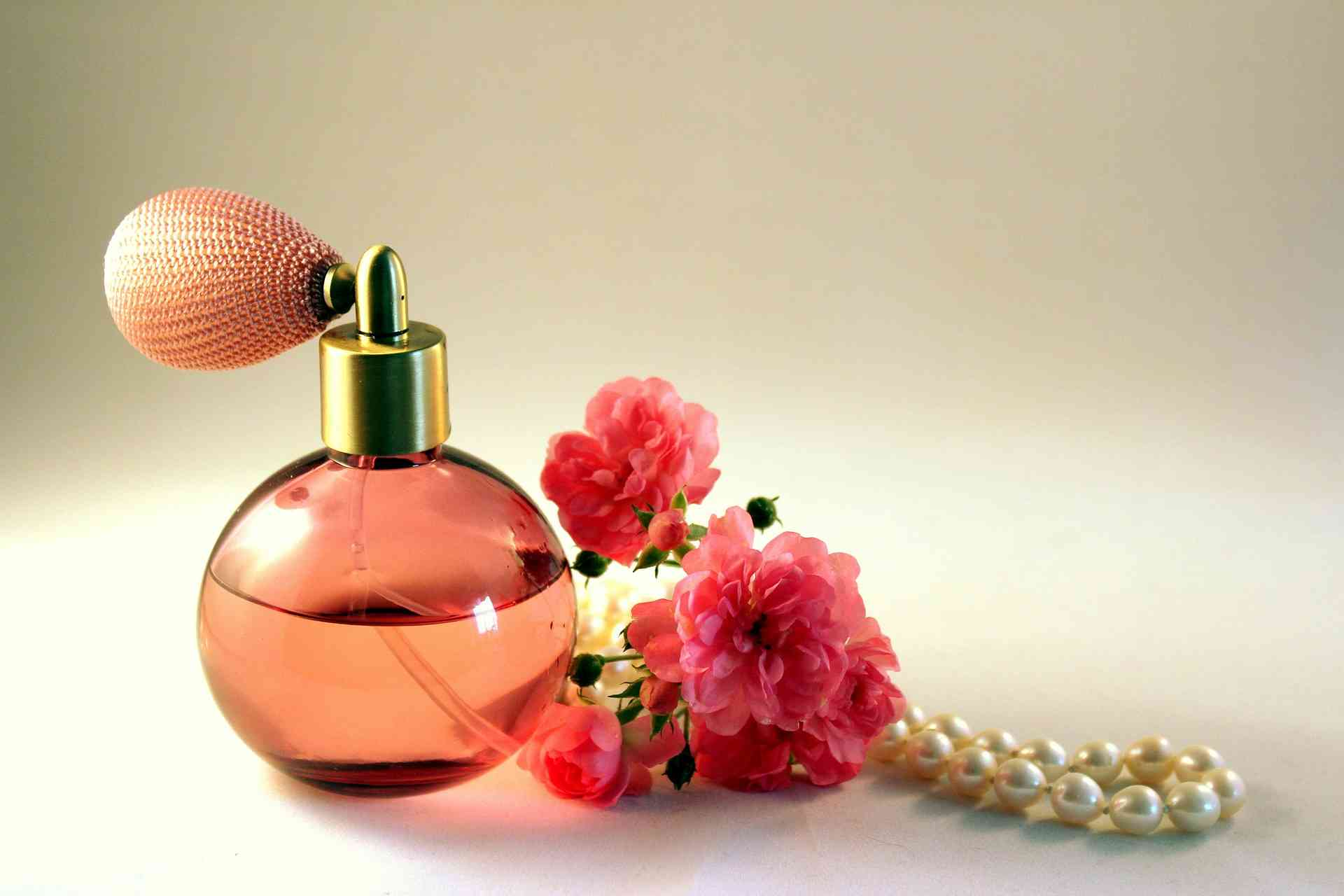 Top-Rated Perfumes for Women